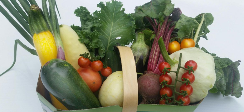 organic-u-pick-basket-biologique-panier-autoceuillette